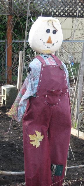scarecrow-crop