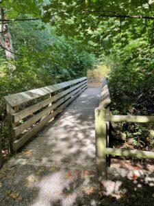 Volunteer Bridge in Walker Preserve